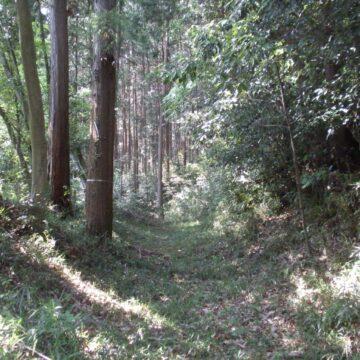 Katsunuma Castle Ruins